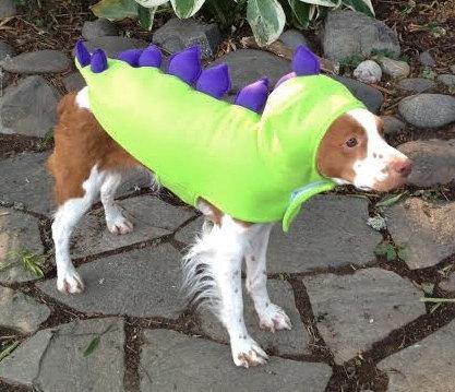 RuffAroundEdges Dog Costme