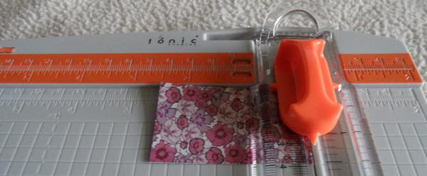 Tonic-Cutter-3